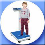 Прокат портативных весов